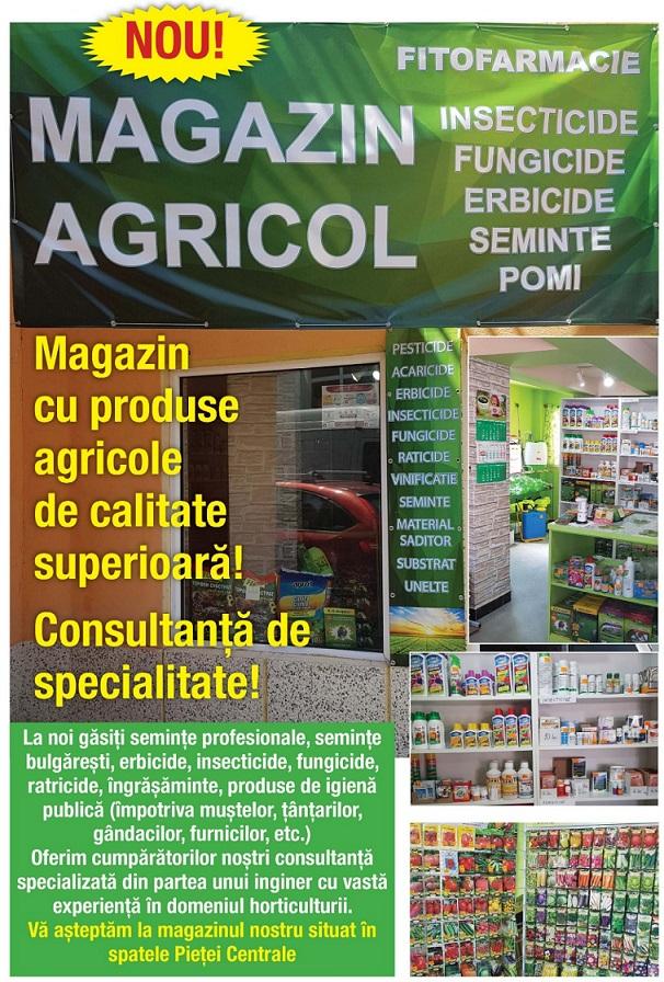 MAGAZIN AGRICOL ÎN SPATELE PIEȚEI CENTRALE