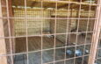 Asociaţia care a încheiat contract cu Primăria a început să adune câinii de pe străzi